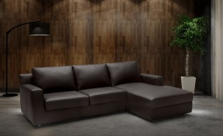 Sleeper Contemporary Sectional with Storage Under Chaise