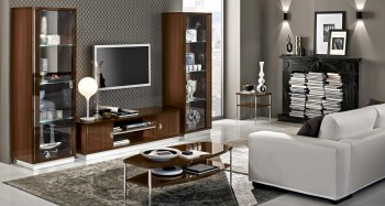 Contemporary Wall Unit with Glass Shelves