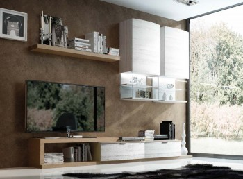 Elite White with Natural Wood Color Wall Unit