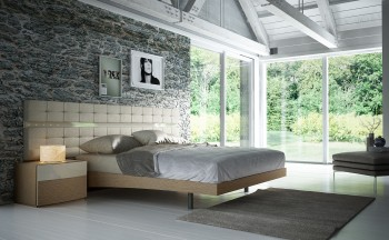 Fashionable Wood Platform and Headboard Bed with Lights