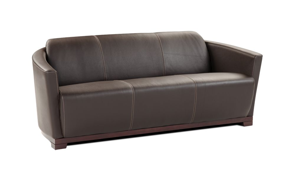 Hotel Contemporary Italian Leather Sofa Set Cincinnati