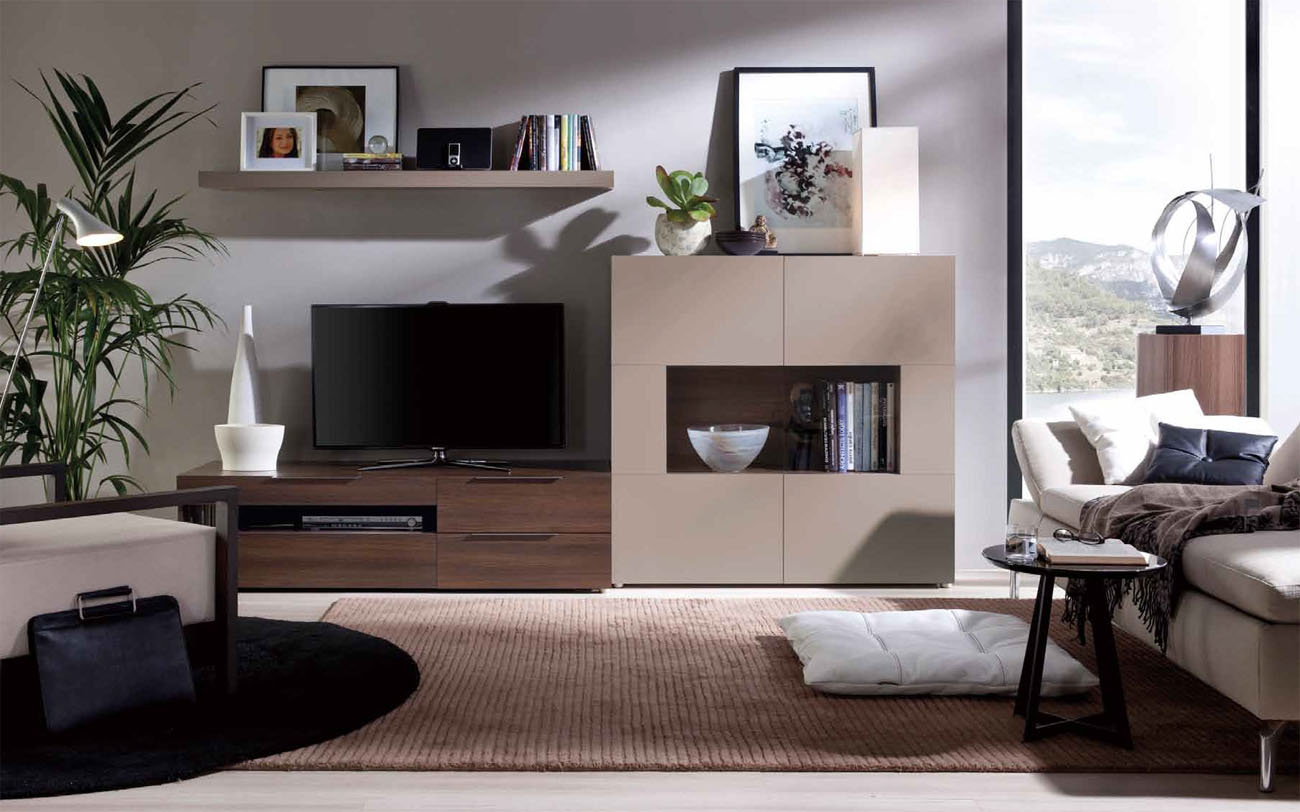 Grand Contemporary Wall Unit With Glass Doors And A Shelf Pittsburgh